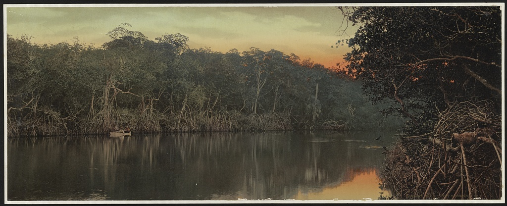 Florida, sunset on the Ocklawaha [i.e. Oklawaha]