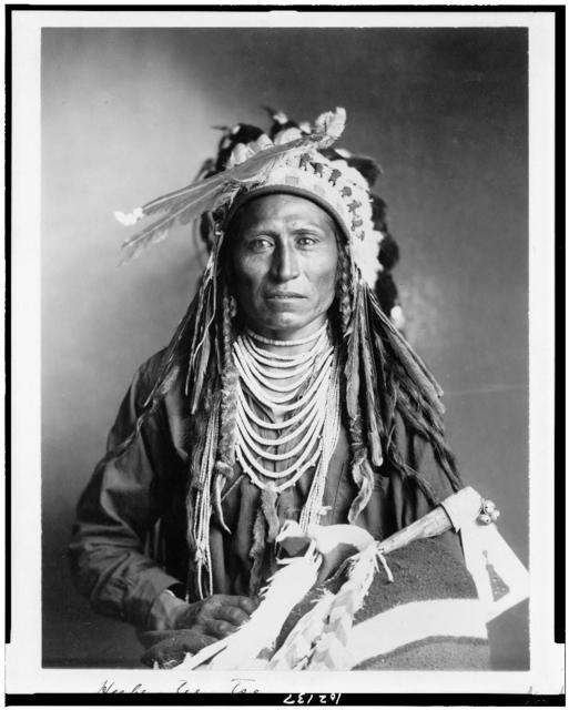 [Heebe-tee-tse, Shoshone Indian, half-length portrait, facing front]