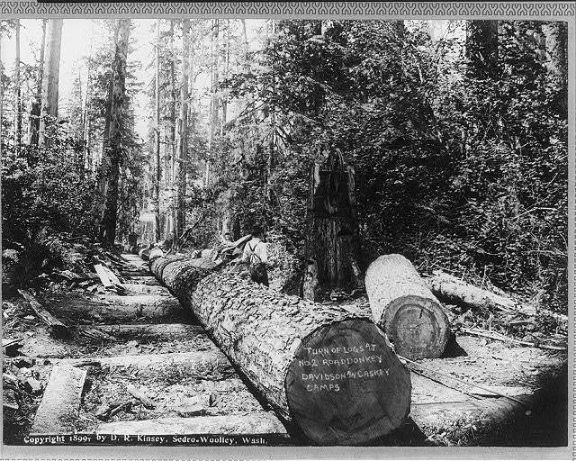 Lumbering in the Cascade Mountains, near Seattle, Wash.: [Turn of logs at No. 2 Road donkey, Davidson and Caskey Camps]