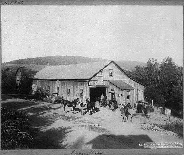 [Onteora Livery Stable, Tannersville, N.Y.]