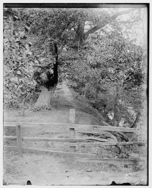 [Path leading to camp at Shoup's Mill, near Dayton, Ohio]