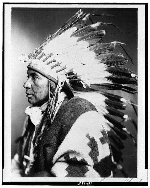 [Sego--Shoshone Indian, half-length portrait, facing left]