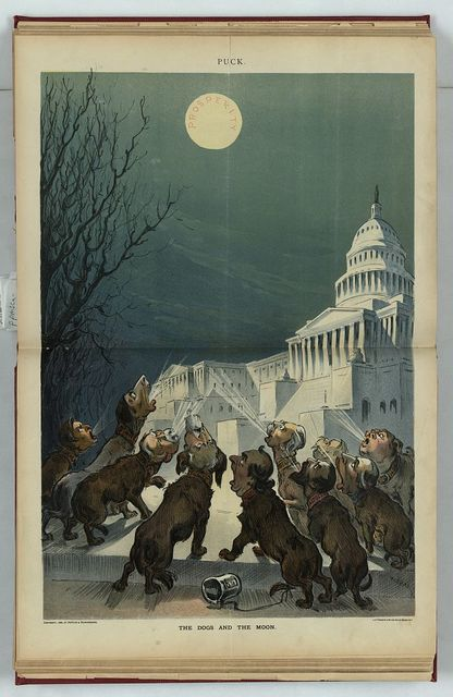 The dogs and the moon / Keppler.