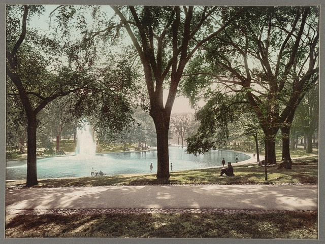 The Frog Pond, Boston Common