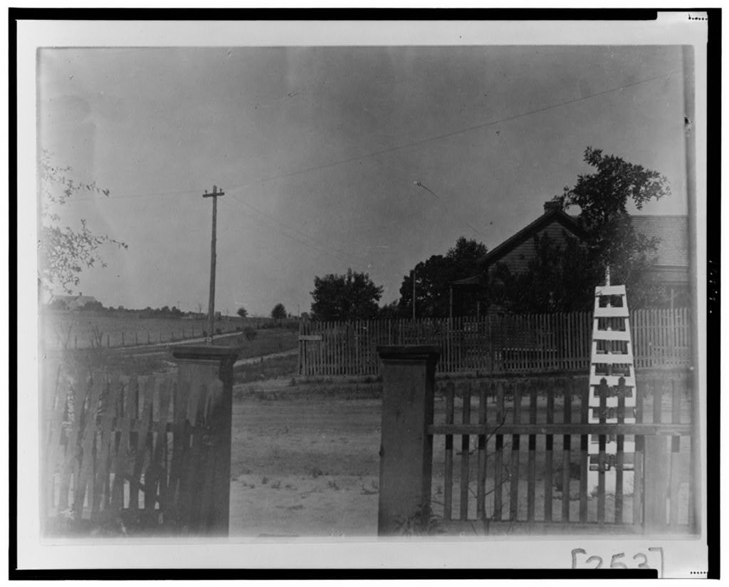 [View of fenced yards]