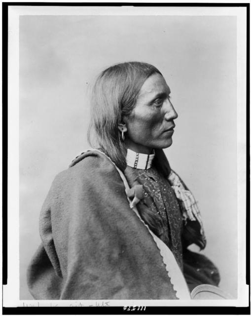 [Wah-be-git - Ute man, half-length portrait, facing right, wearing earring in right ear, with two braids]