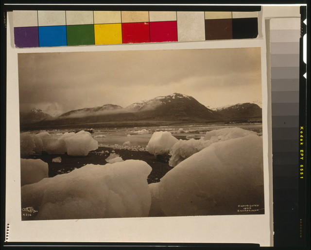 [Icebergs, bay, and mountain in background, Alaska] / Curtis.
