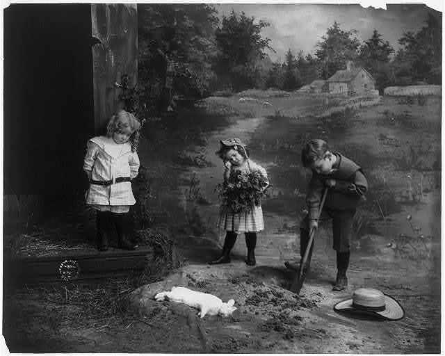 [3 children burying dead rabbit]