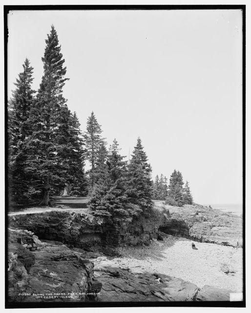 Along the shore path, Bar Harbor, Mt. [i.e. Mount] Desert Island, Me.
