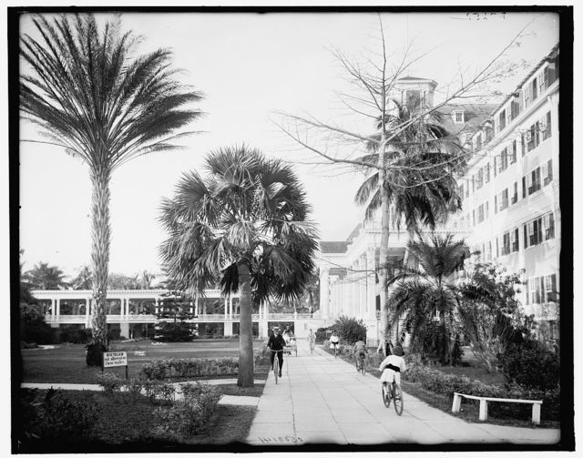 [Along the west facade, Royal Poinciana, Palm Beach, Fla.]