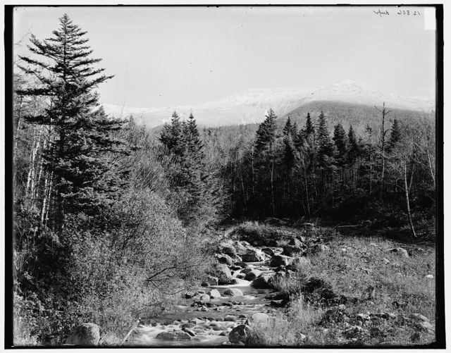 [Ammonoosuc River and Mt. Monroe, Mount Pleasant, White Mountains]