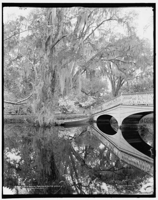 At the bridge, Magnolia-on-the-Ashley [i.e. Magnolia Gardens], Charleston, S.C.