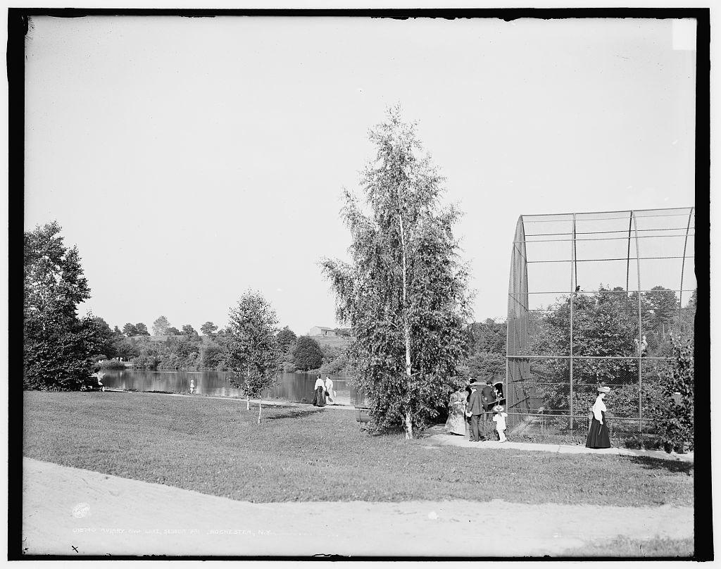 Aviary and lake, Seneca Park, Rochester, N.Y.