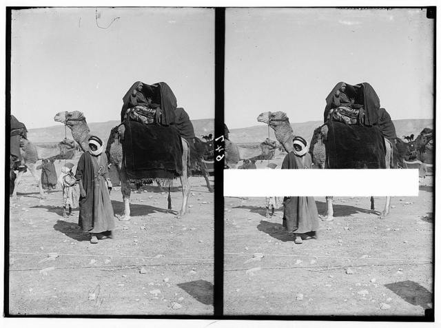 Bedouin wedding series. Bride's-maids on camel covered with 'Aba'