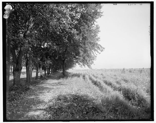 [Bicycle path near Minnehaha Falls, Minneapolis, Minn.]