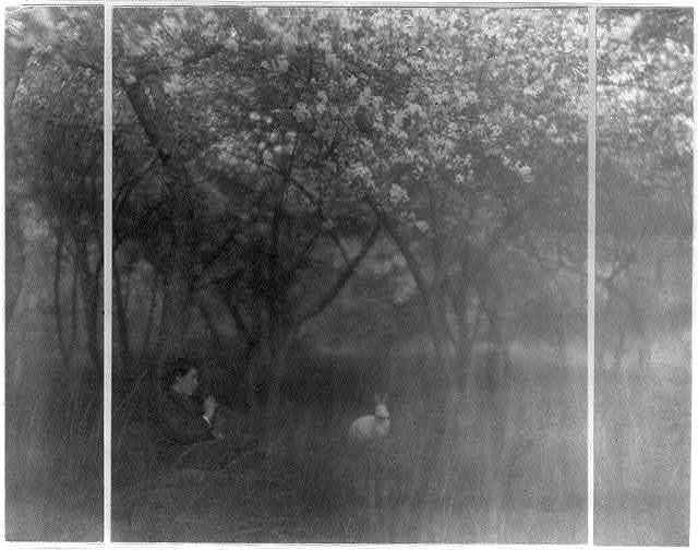 [Boy in orchard playing flute to white rabbit]