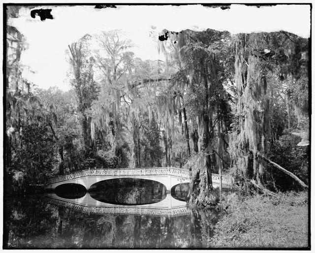 [Bridge and waterfront, Magnolia Gardens, Charleston, S.C.]