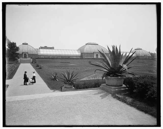 [Conservatory, Washington Park, Chicago, Ill.]