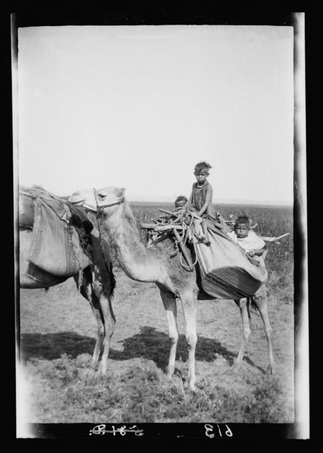 Costumes, characters, etc. Bedouin children on camel