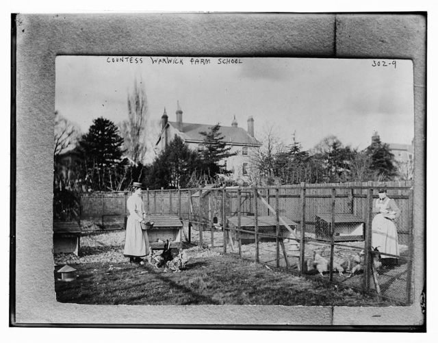 Countess Warwick, Farm School