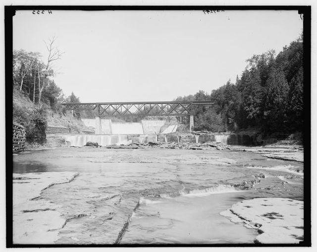 [Dam at Trenton Falls, Trenton Falls, N.Y.]