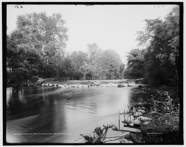 Dam, [Red] Cedar River near Mich. Agricultural College [i.e. Michigan State University], [East] Lansing, Mich.