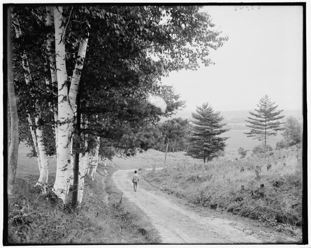 [Down the road to Ethan Allen Farm, Burlington, Vt.]