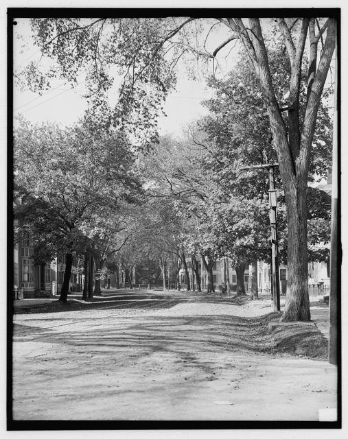 [Essex Street, looking toward library, Salem, Mass.]