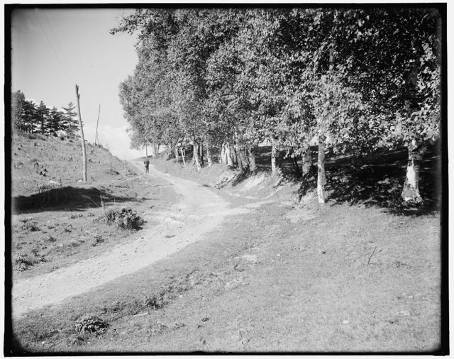 [Ethan Allen Farm, up the hill, Burlington, Vt.]
