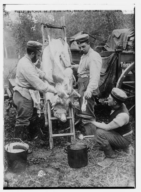 Field butcher on firing line, North Sea Coast