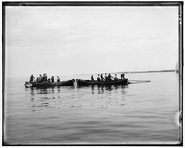 [Fishermen in boats pulling in net]