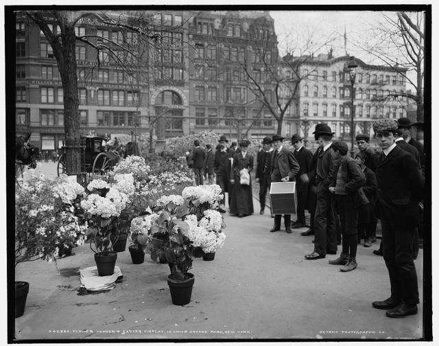 Flower vender's [sic] Easter display in Union Square Park, New York