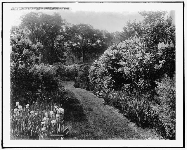 Garden walk, Sargent estate, Brookline, Mass.