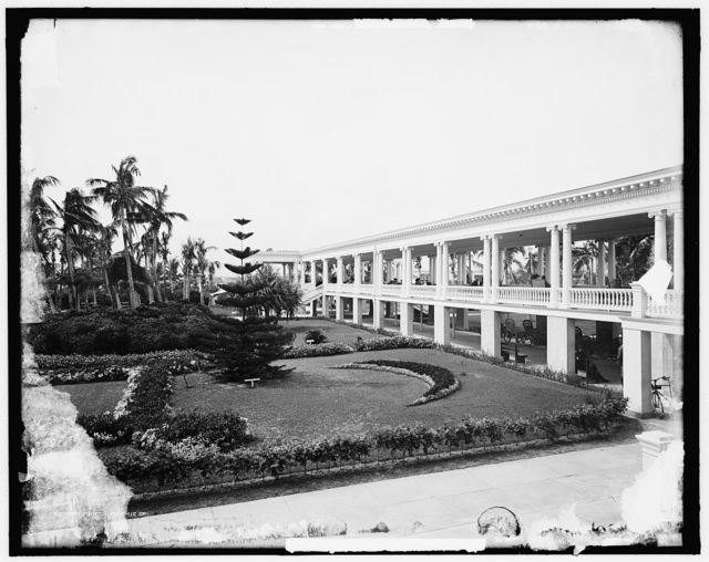 [Gardens of the Royal Poinciana Hotel, Palm Beach, Fla.]