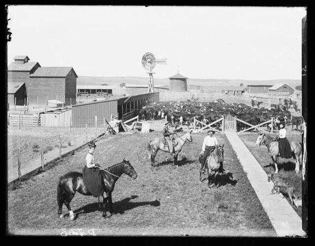 George Adams ranch, Deer Creek, Lincoln County, Nebraska.