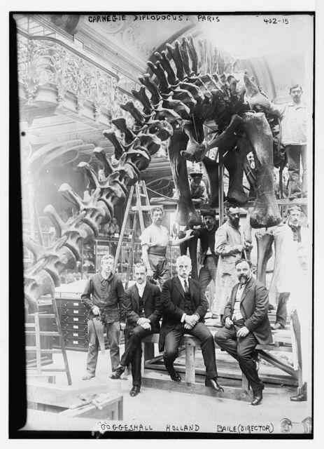 Goggeshall, Holland, Baile (director), Carnegie Diplodocus, Paris