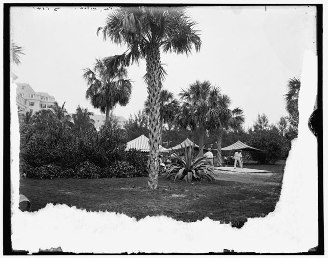 [Golf links, Hotel Royal Poinciana, Palm Beach, Fla.]
