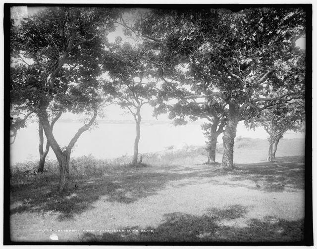 Green Port from Manhansett [i.e. Manhasset], Shelter Island