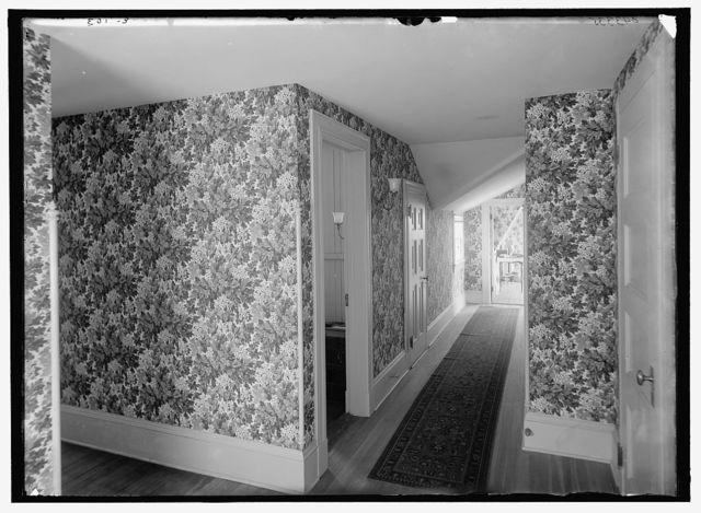 [Hall with floral wallpaper, probably in a clubhouse, New York City]