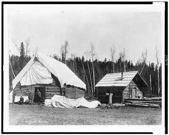 Homesteader cabins