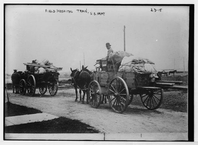 Horse drawn wagons of Field Hospital train, U.S. Army