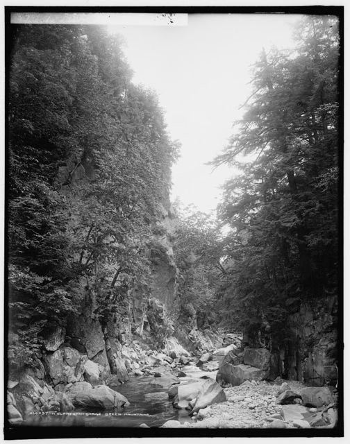 In Clarendon Gorge, Green Mountains