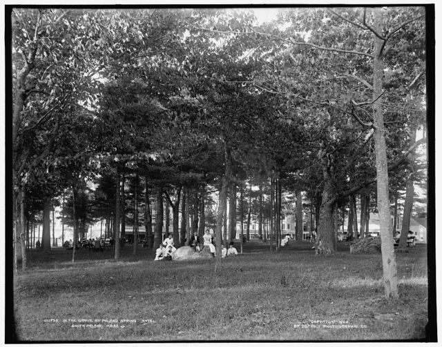 In the grove at Poland Spring Hotel, South Poland, Maine