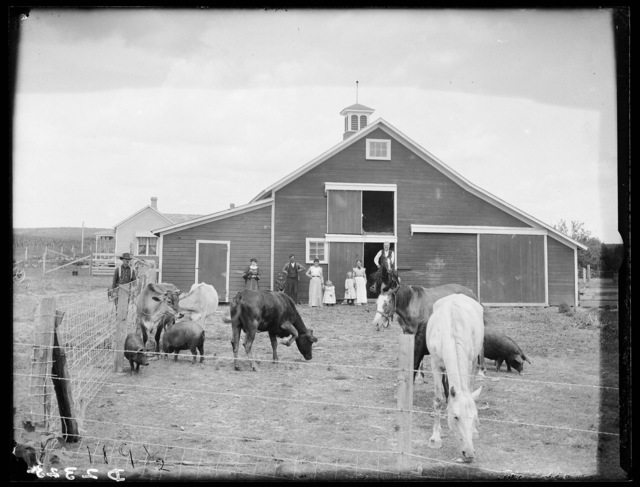 James Wallace, Amherst, Buffalo County, Nebraska.