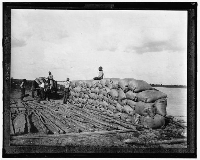 [Laborers piling filled sacks at shorelines]