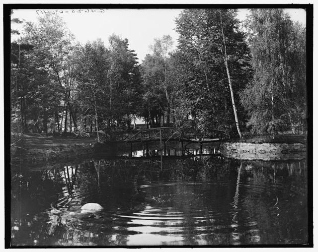 [Lake in cemetery, Marquette, Mich.]