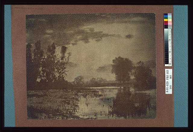 [Landscape of wetlands and trees with clouds overhead]