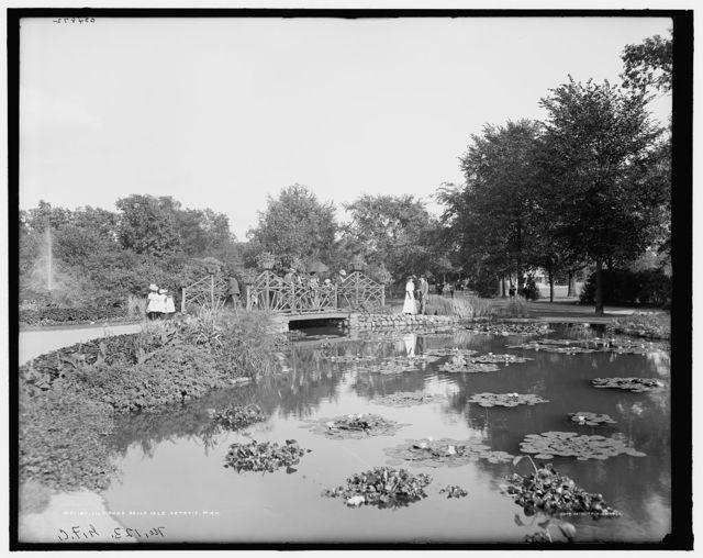 Lily pond, Belle Isle [Park], Detroit, Mich.