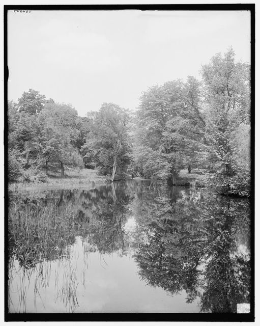 [Lily pond, Mount Holyoke College, South Hadley, Mass.]