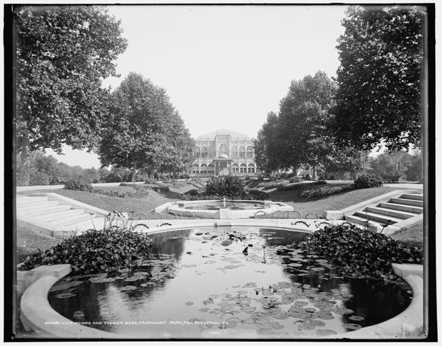 Lily ponds and flower beds, Fairmount Park, Philadelphia, Pa.